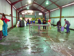Cleaning the rehab shed at Tristan. Photo by Katrine Herian