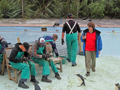Environmental Advisor and former SANCCOB Centre Manager, Estelle van der Merwe, watches as volunteers feed the penguins. Photo by Tina Glass